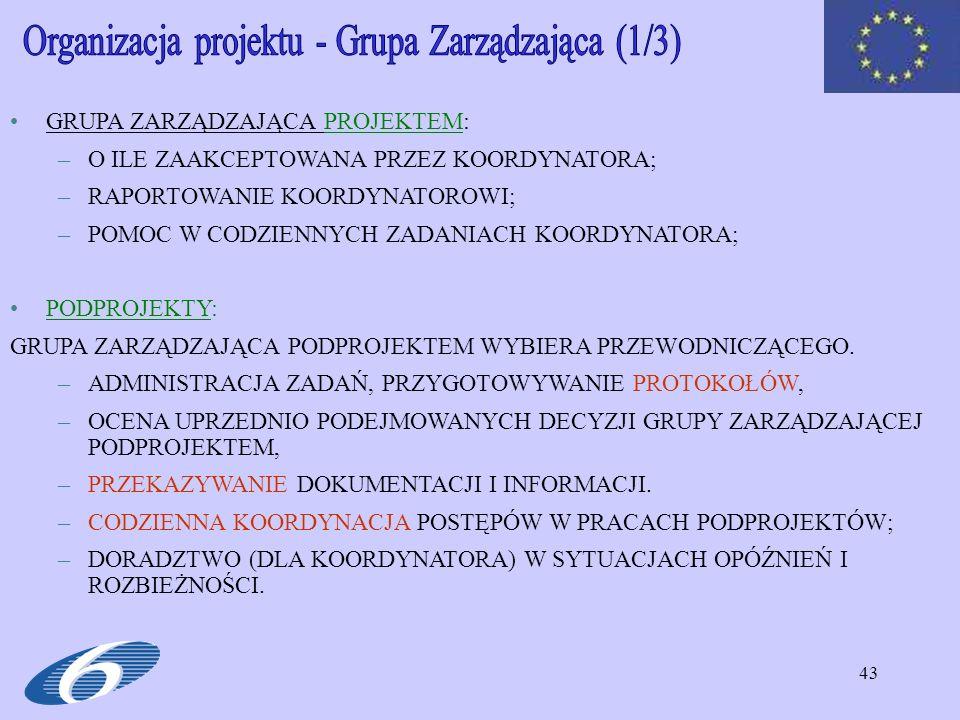 Organizacja projektu - Grupa Zarządzająca (1/3)