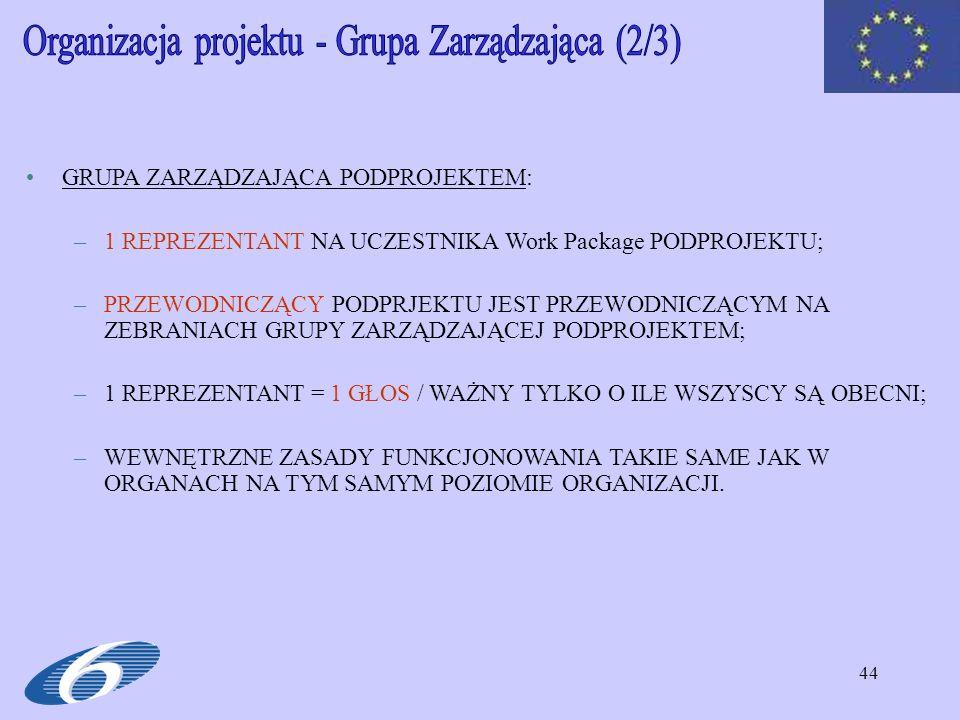 Organizacja projektu - Grupa Zarządzająca (2/3)