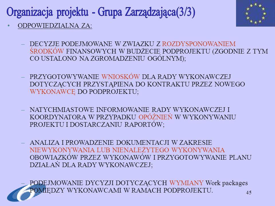 Organizacja projektu - Grupa Zarządzająca(3/3)