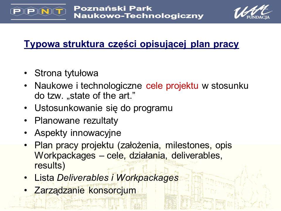 Typowa struktura części opisującej plan pracy