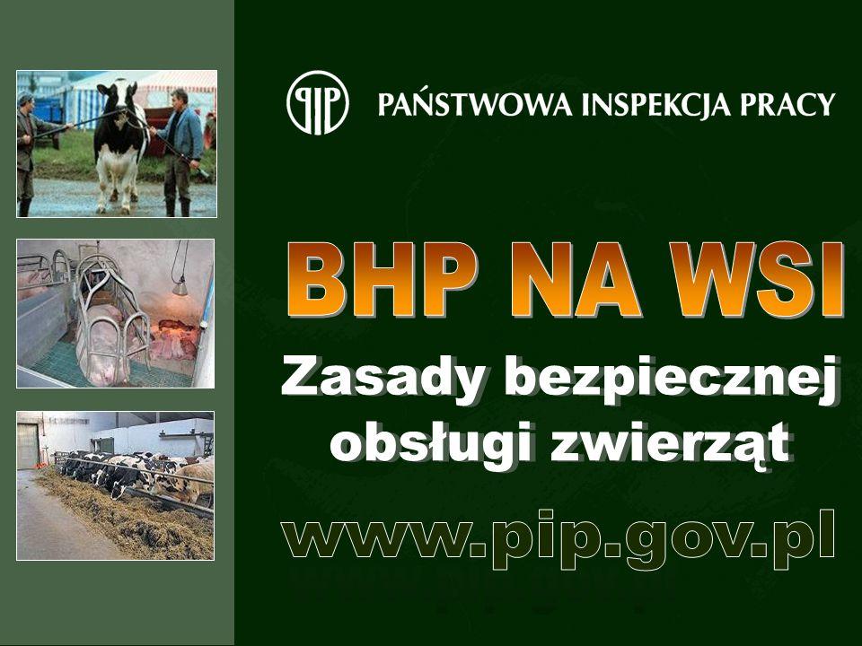 BHP NA WSI Zasady bezpiecznej obsługi zwierząt www.pip.gov.pl