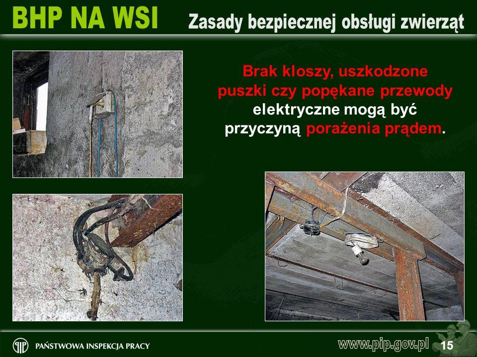 Brak kloszy, uszkodzone puszki czy popękane przewody elektryczne mogą być przyczyną porażenia prądem.