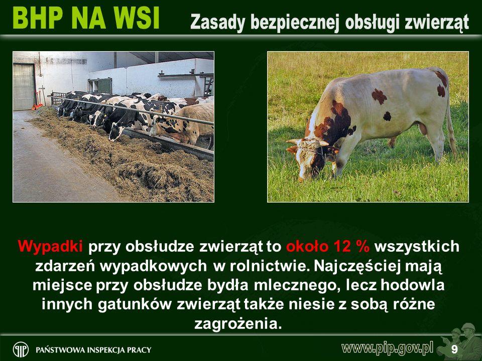 Wypadki przy obsłudze zwierząt to około 12 % wszystkich zdarzeń wypadkowych w rolnictwie. Najczęściej mają miejsce przy obsłudze bydła mlecznego, lecz hodowla innych gatunków zwierząt także niesie z sobą różne zagrożenia.