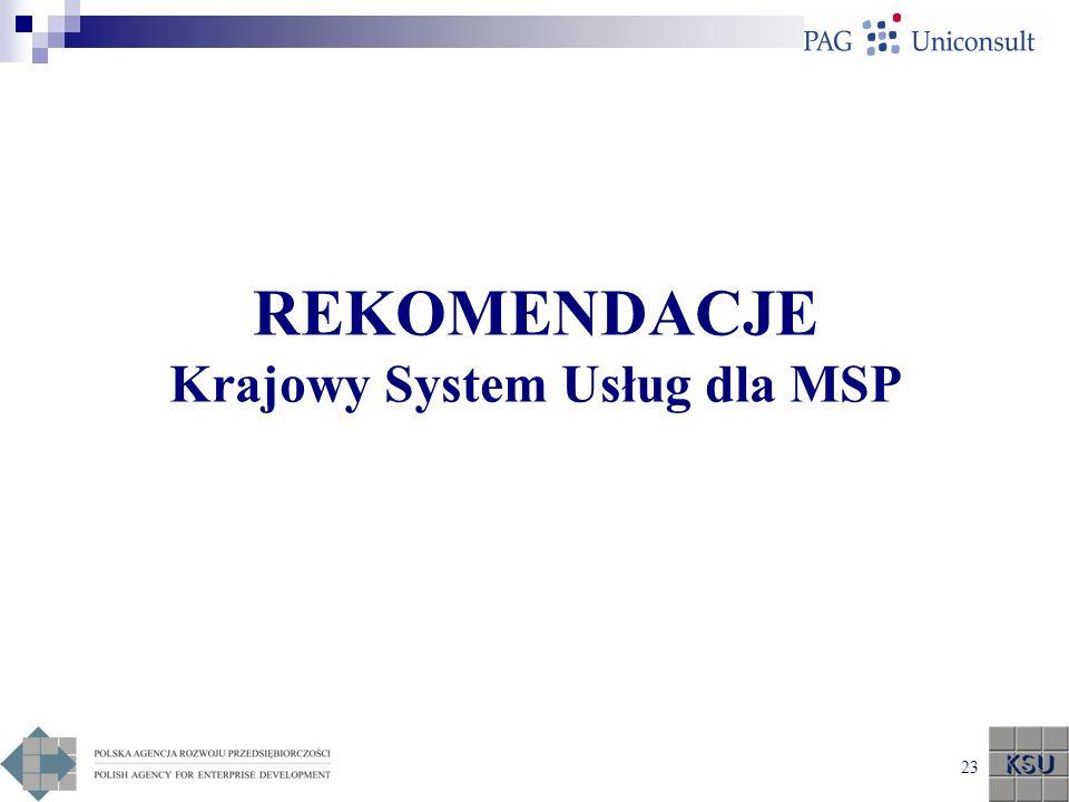 REKOMENDACJE Krajowy System Usług dla MSP