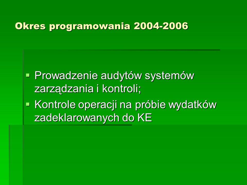 Prowadzenie audytów systemów zarządzania i kontroli;