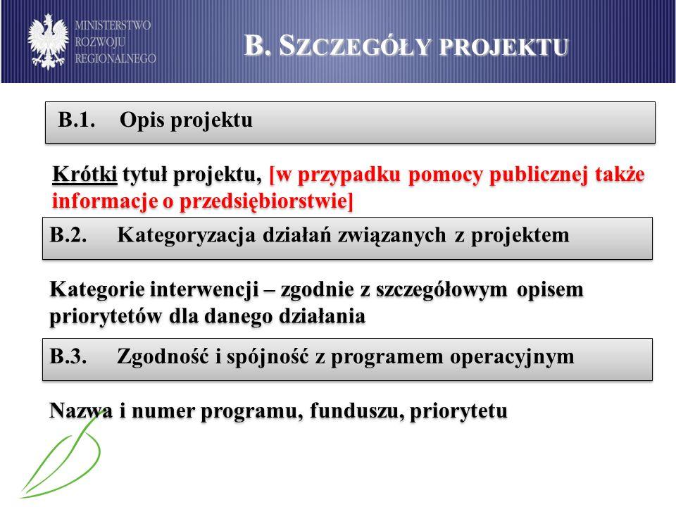 B. Szczegóły projektu B.1. Opis projektu