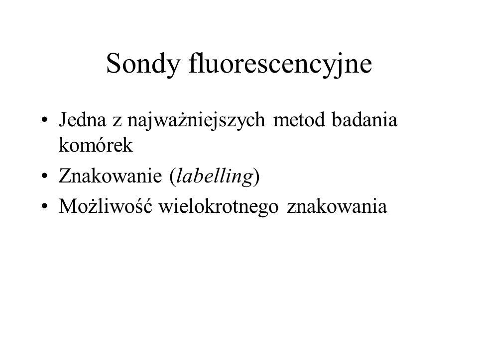 Sondy fluorescencyjne