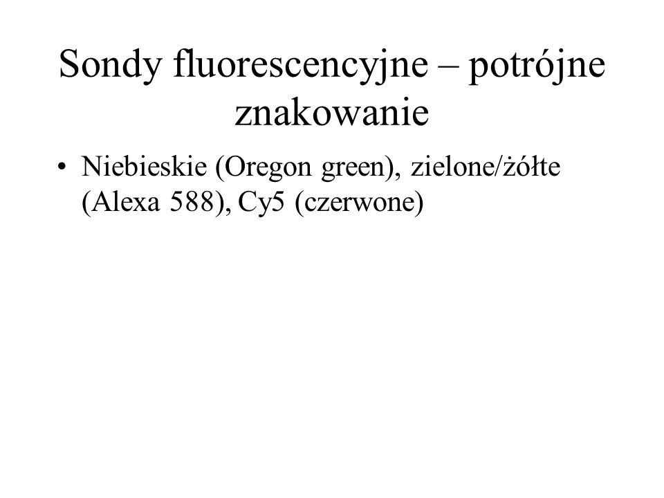 Sondy fluorescencyjne – potrójne znakowanie