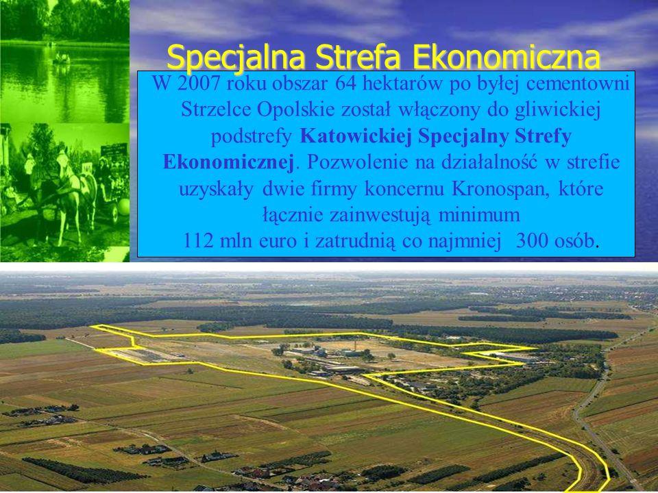 Specjalna Strefa Ekonomiczna