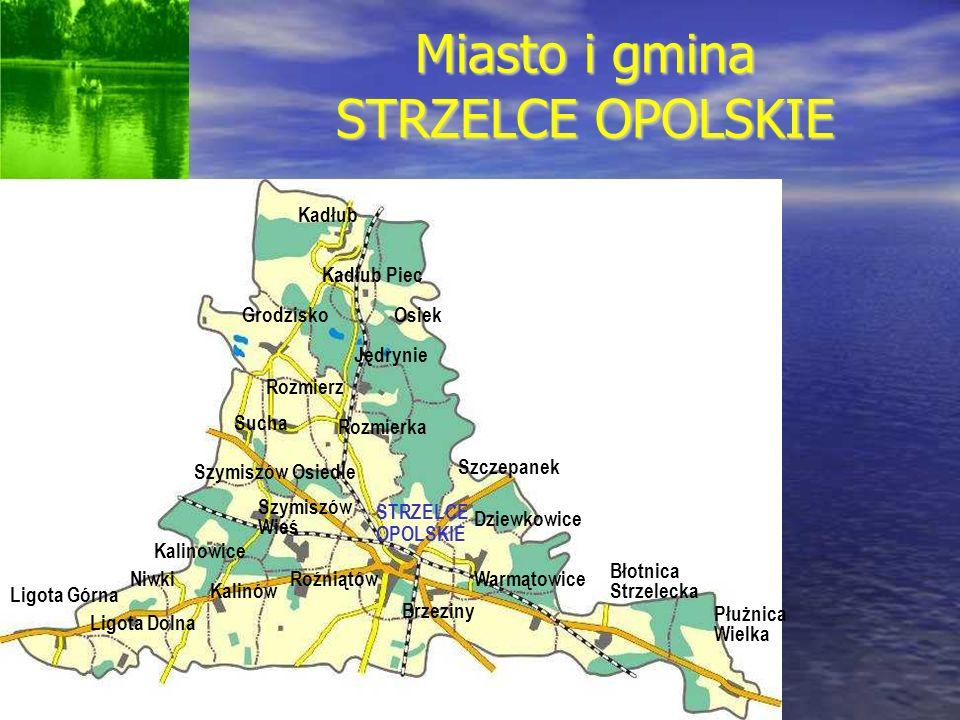 Miasto i gmina STRZELCE OPOLSKIE