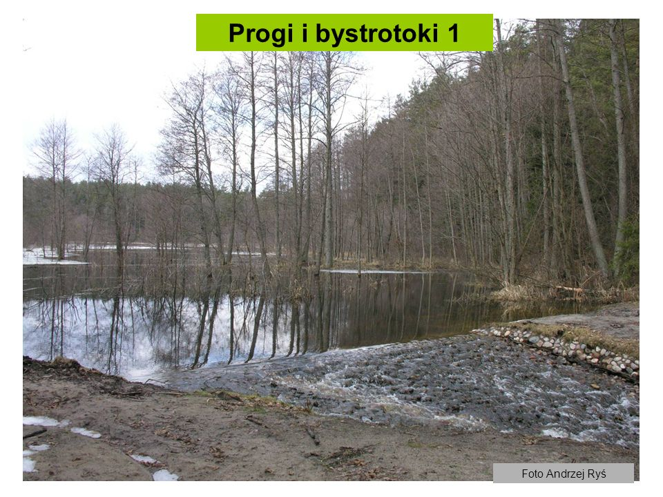 Progi i bystrotoki 1 Foto Andrzej Ryś