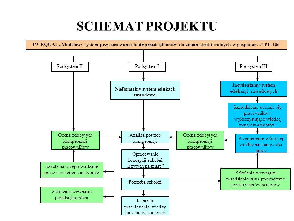 Nieformalny system edukacji Incydentalny system edukacji zawodowych
