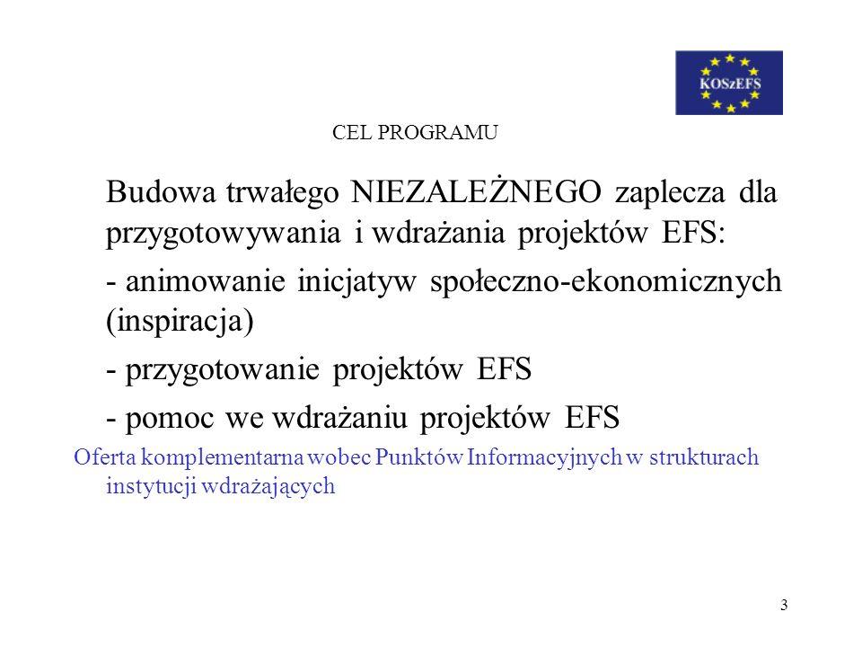 - animowanie inicjatyw społeczno-ekonomicznych (inspiracja)
