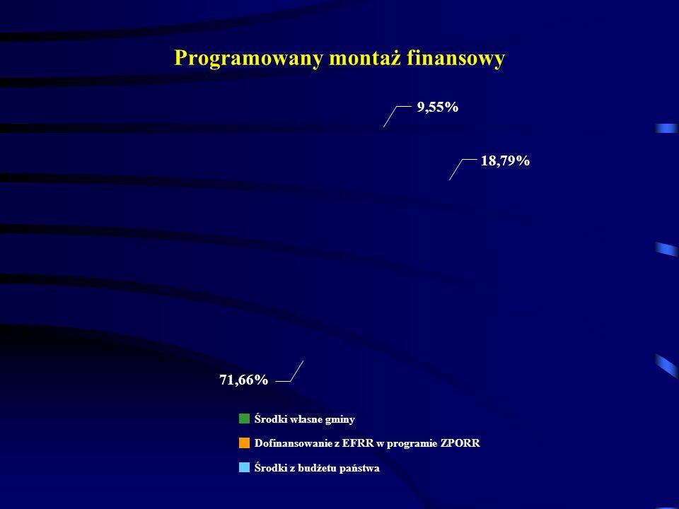 Programowany montaż finansowy