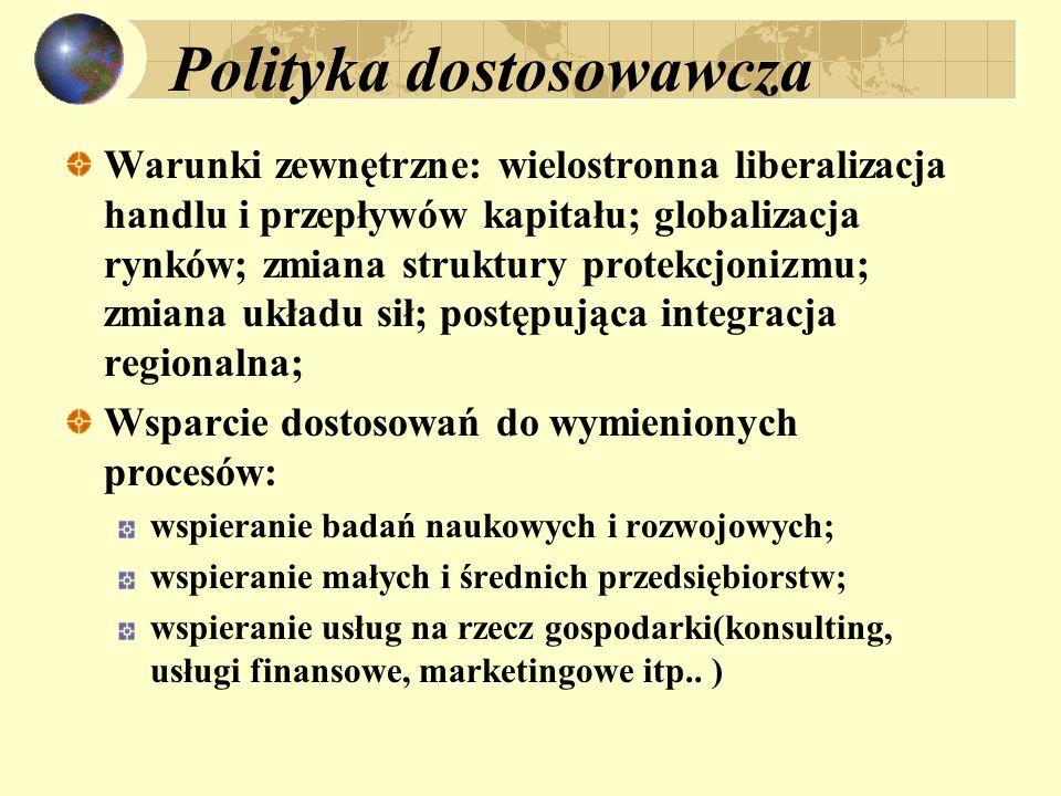 Polityka dostosowawcza