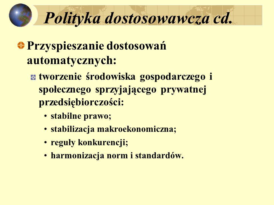 Polityka dostosowawcza cd.