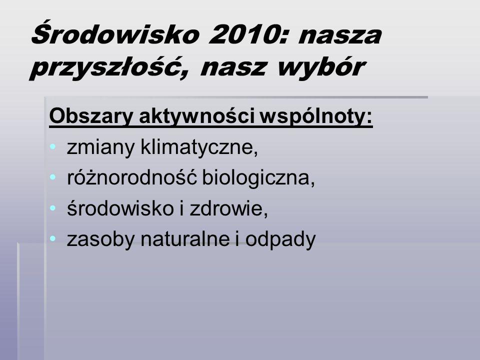 Środowisko 2010: nasza przyszłość, nasz wybór