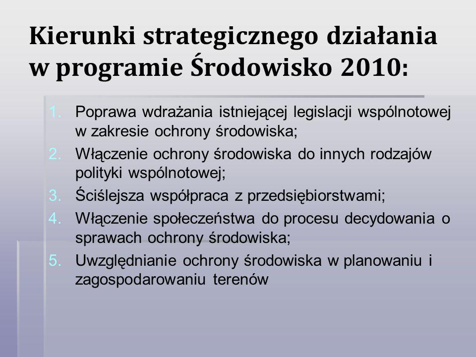 Kierunki strategicznego działania w programie Środowisko 2010: