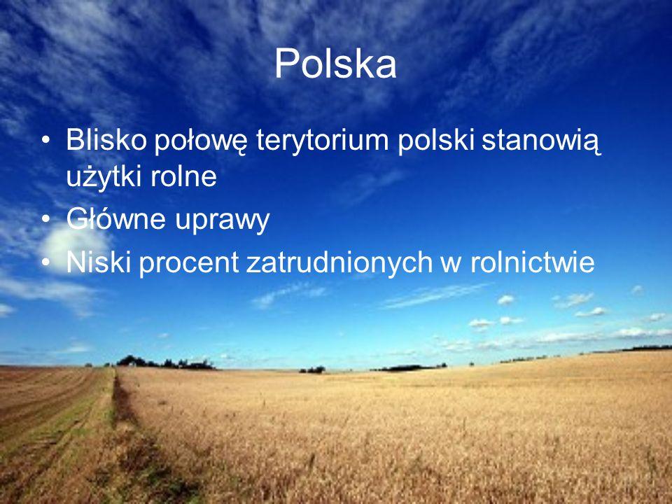 Polska Blisko połowę terytorium polski stanowią użytki rolne