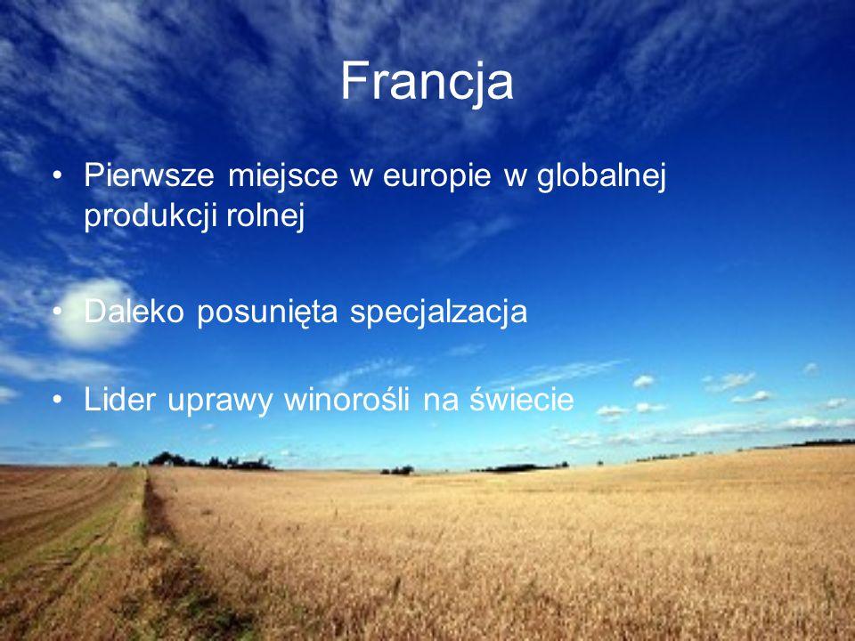 Francja Pierwsze miejsce w europie w globalnej produkcji rolnej