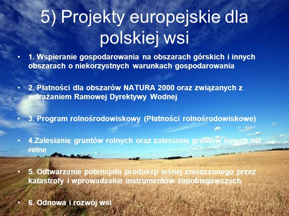 5) Projekty europejskie dla polskiej wsi