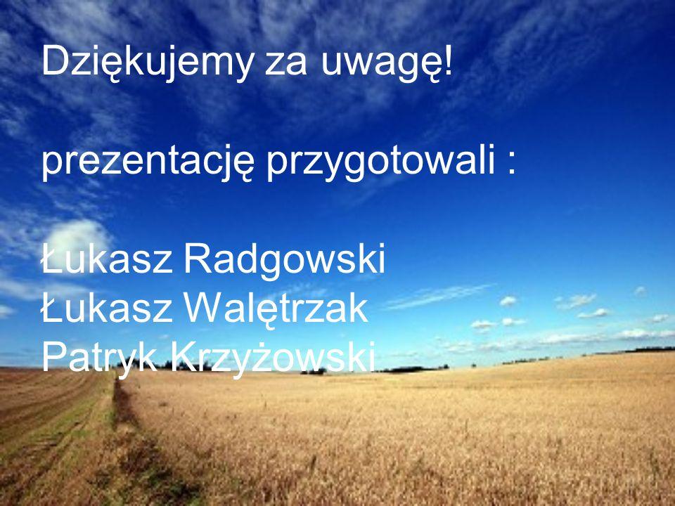 Dziękujemy za uwagę! prezentację przygotowali : Łukasz Radgowski Łukasz Walętrzak Patryk Krzyżowski