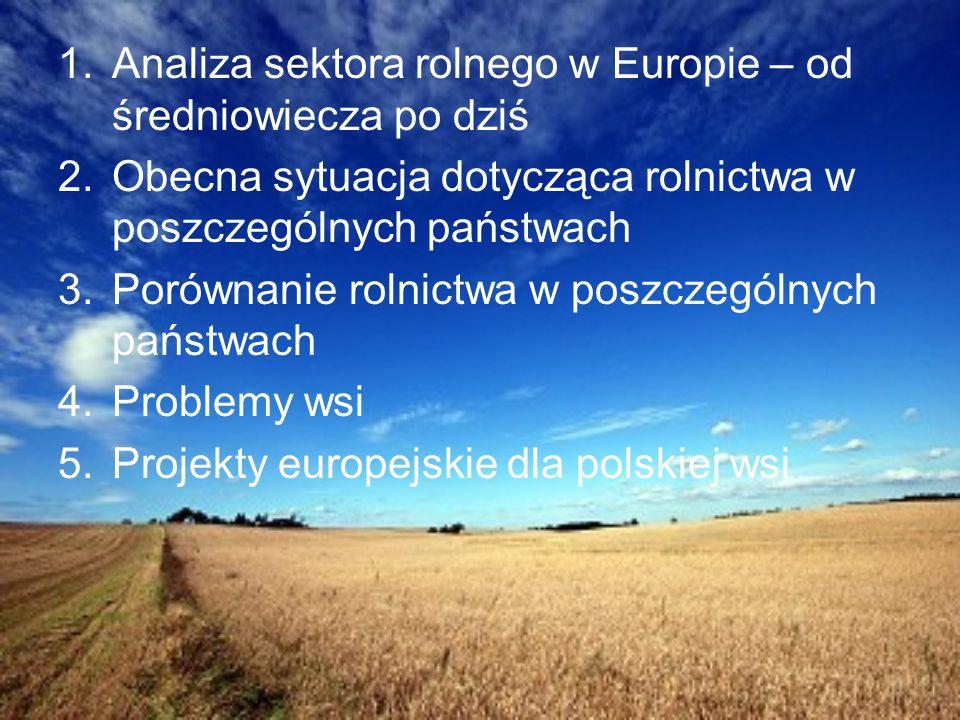 Analiza sektora rolnego w Europie – od średniowiecza po dziś