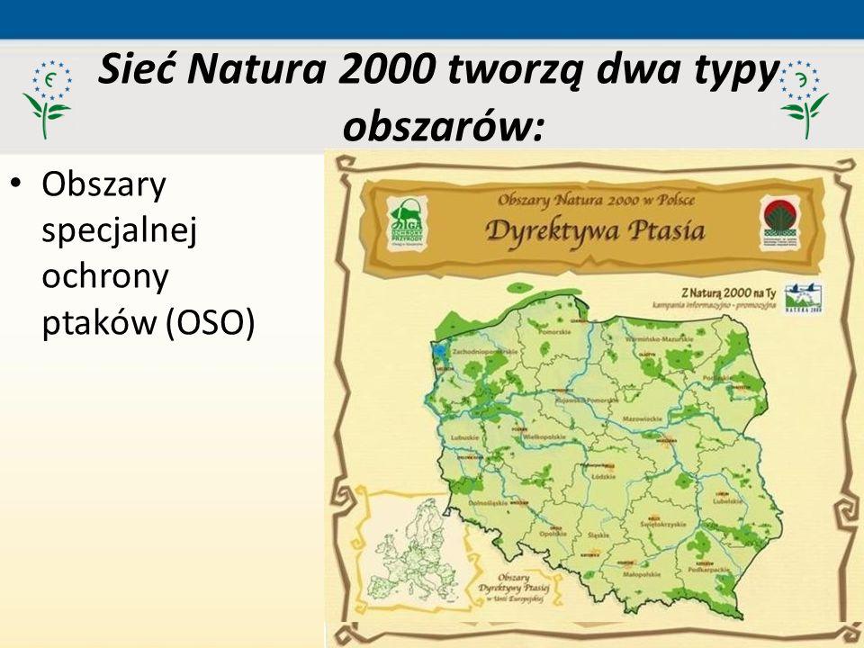 Sieć Natura 2000 tworzą dwa typy