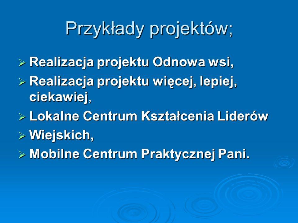 Przykłady projektów; Realizacja projektu Odnowa wsi,