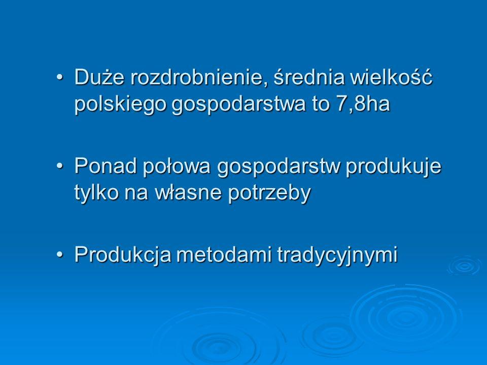 Duże rozdrobnienie, średnia wielkość polskiego gospodarstwa to 7,8ha