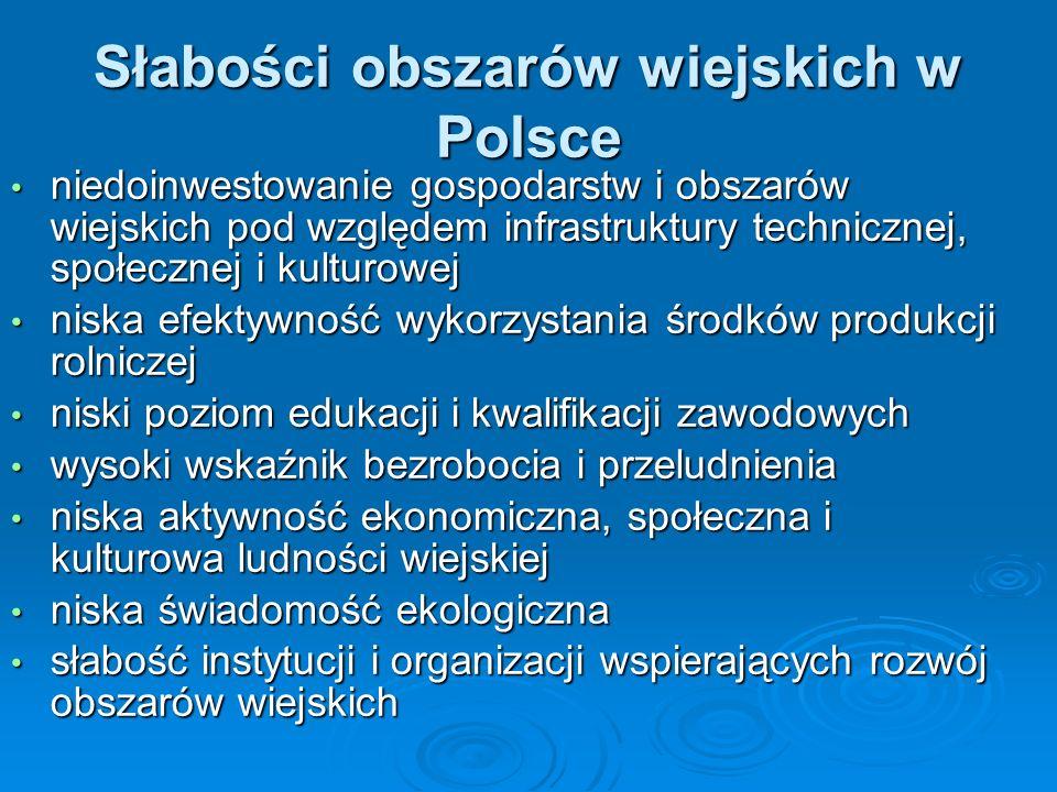 Słabości obszarów wiejskich w Polsce