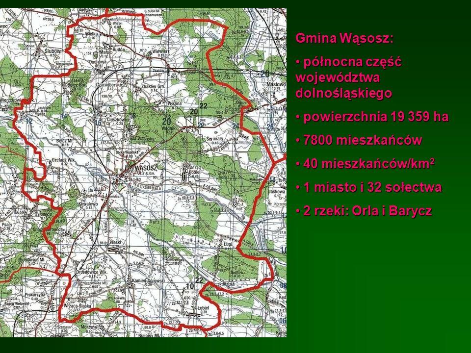 Gmina Wąsosz:północna część województwa dolnośląskiego. powierzchnia 19 359 ha. 7800 mieszkańców. 40 mieszkańców/km2.