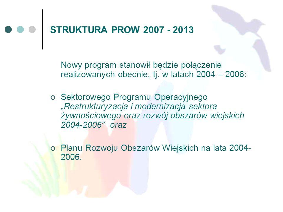 STRUKTURA PROW 2007 - 2013 Nowy program stanowił będzie połączenie realizowanych obecnie, tj. w latach 2004 – 2006: