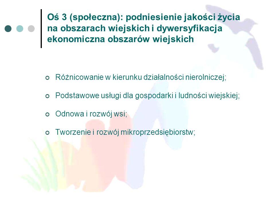 Oś 3 (społeczna): podniesienie jakości życia na obszarach wiejskich i dywersyfikacja ekonomiczna obszarów wiejskich