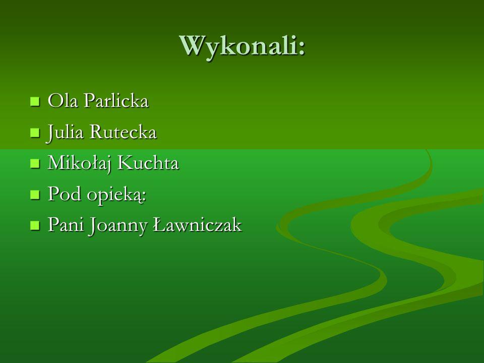 Wykonali: Ola Parlicka Julia Rutecka Mikołaj Kuchta Pod opieką: