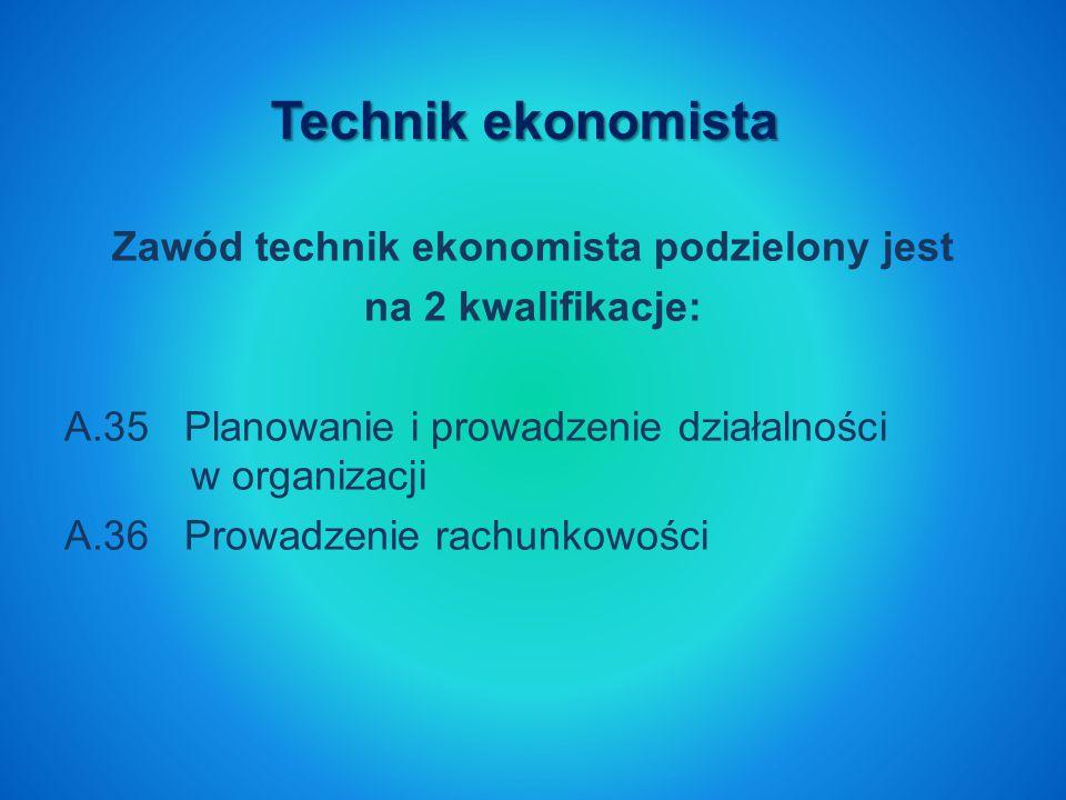 Zawód technik ekonomista podzielony jest