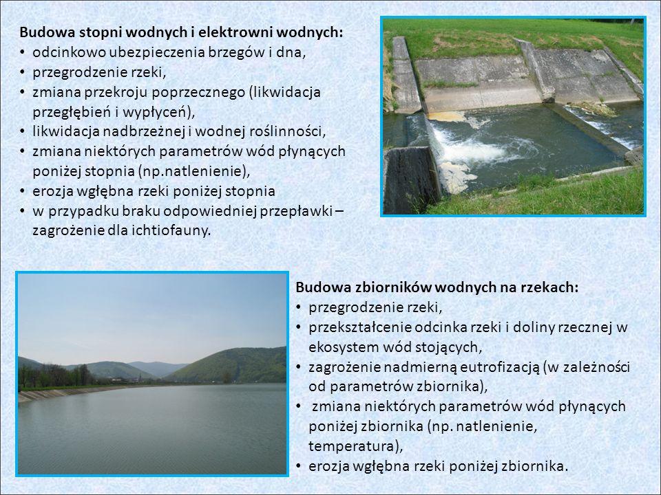 Budowa stopni wodnych i elektrowni wodnych: