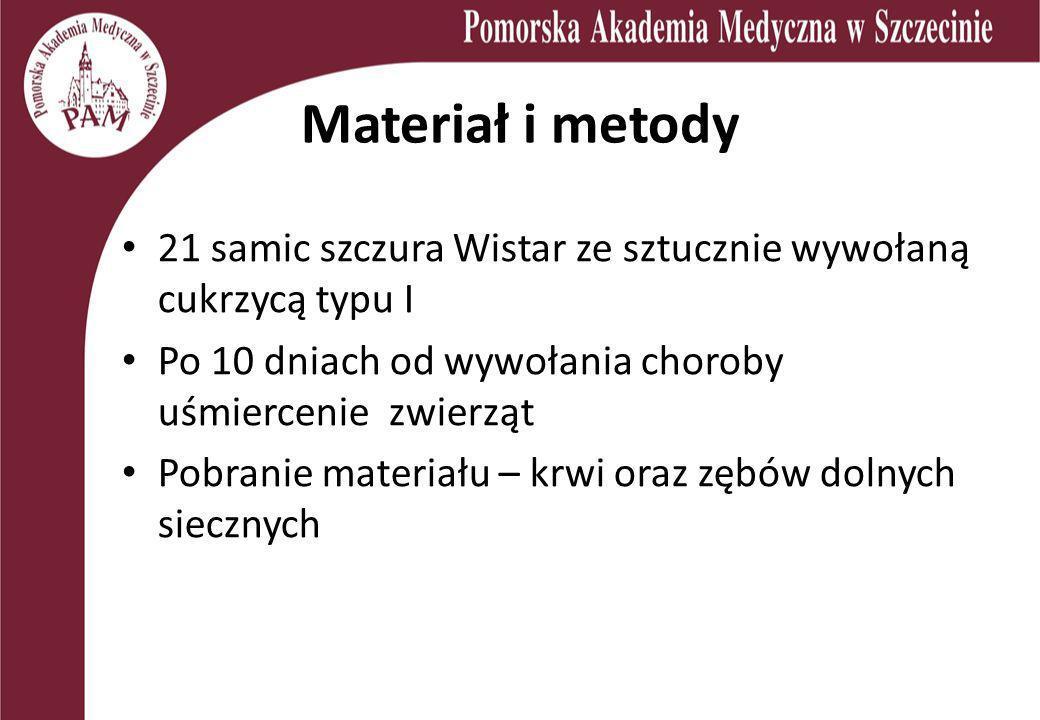 Materiał i metody21 samic szczura Wistar ze sztucznie wywołaną cukrzycą typu I. Po 10 dniach od wywołania choroby uśmiercenie zwierząt.