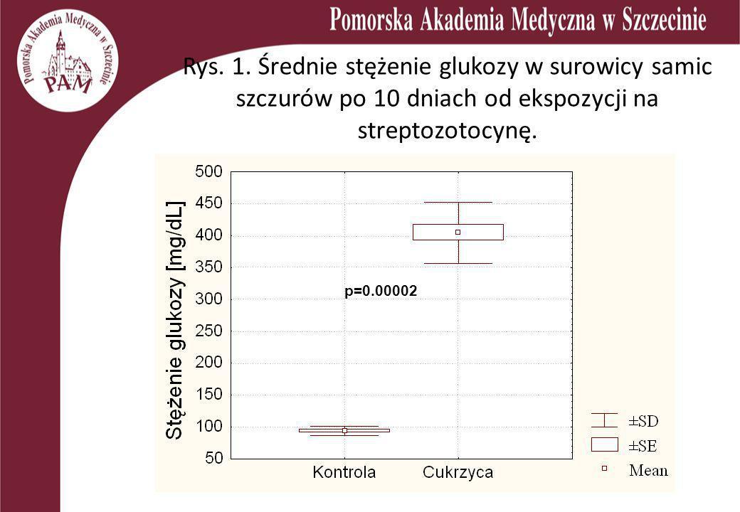 Rys. 1. Średnie stężenie glukozy w surowicy samic szczurów po 10 dniach od ekspozycji na streptozotocynę.