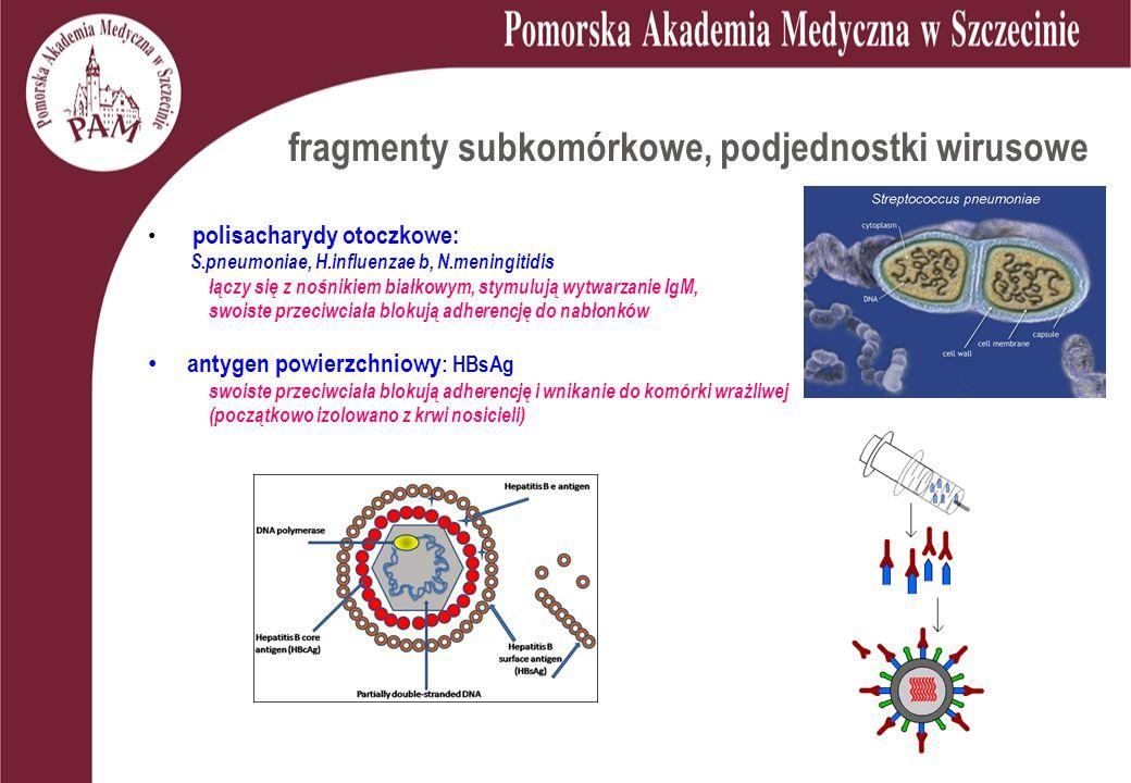 fragmenty subkomórkowe, podjednostki wirusowe