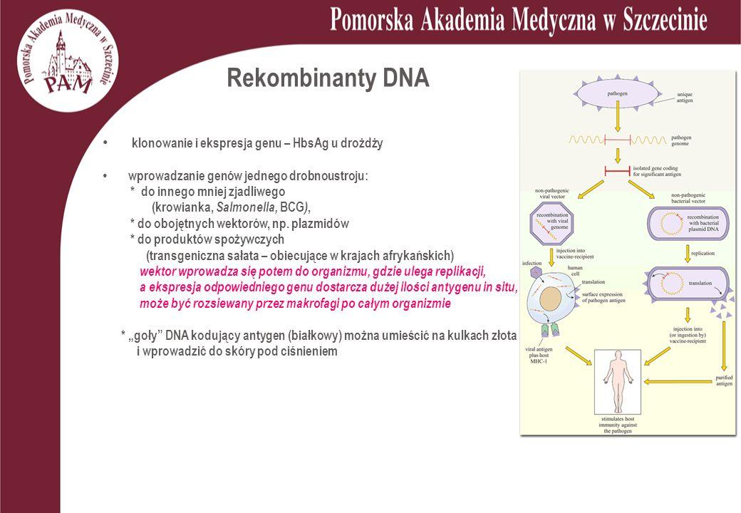 Rekombinanty DNA klonowanie i ekspresja genu – HbsAg u drożdży