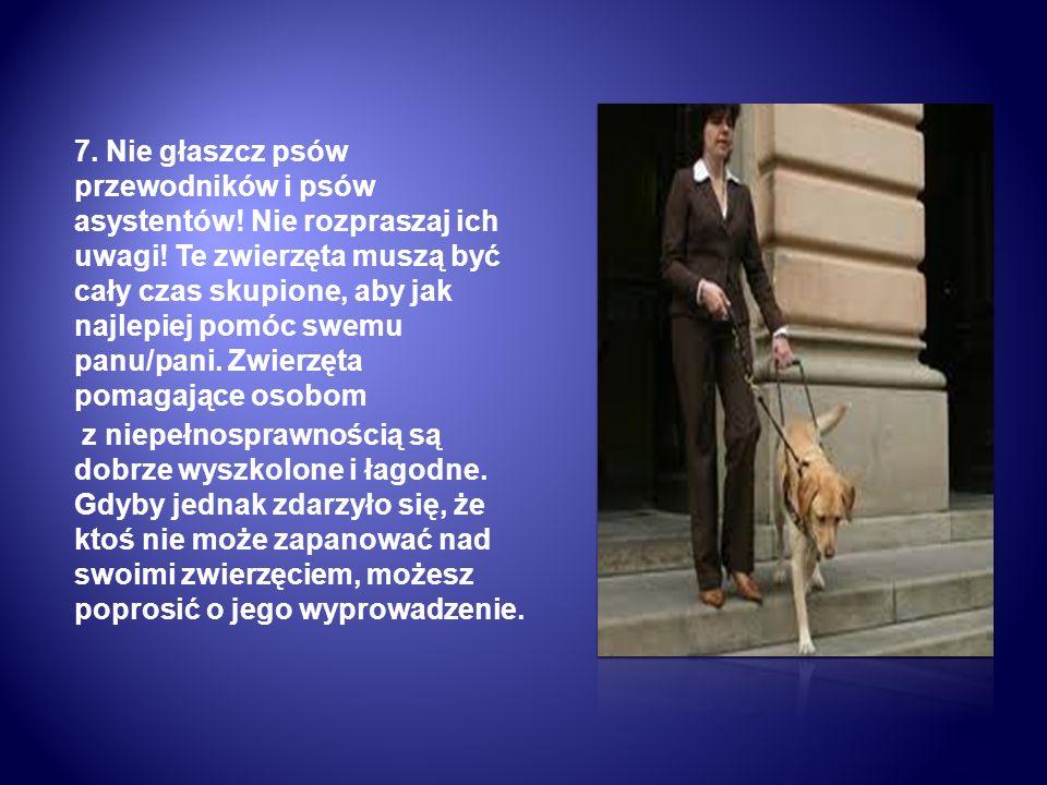 7. Nie głaszcz psów przewodników i psów asystentów