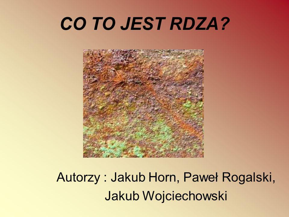 Autorzy : Jakub Horn, Paweł Rogalski, Jakub Wojciechowski