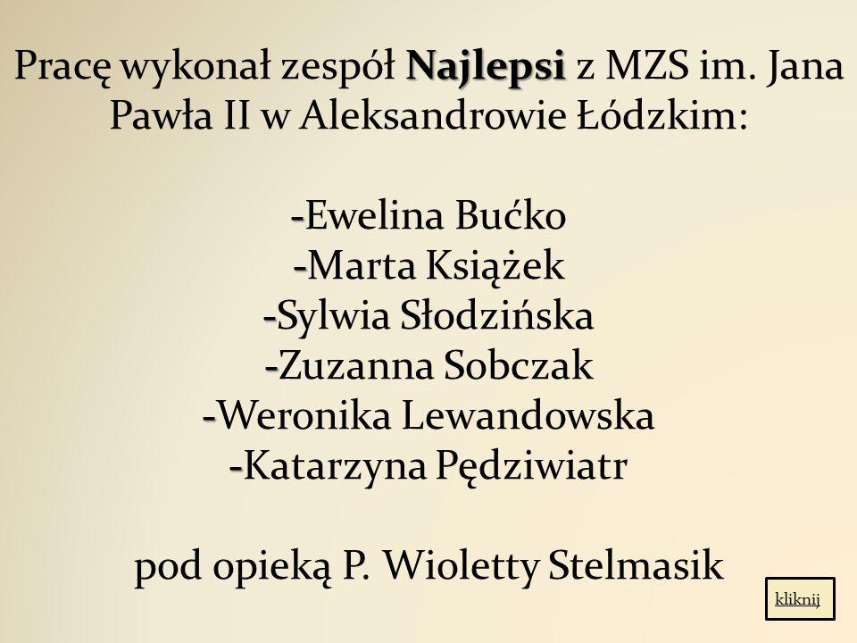 Pracę wykonał zespół Najlepsi z MZS im