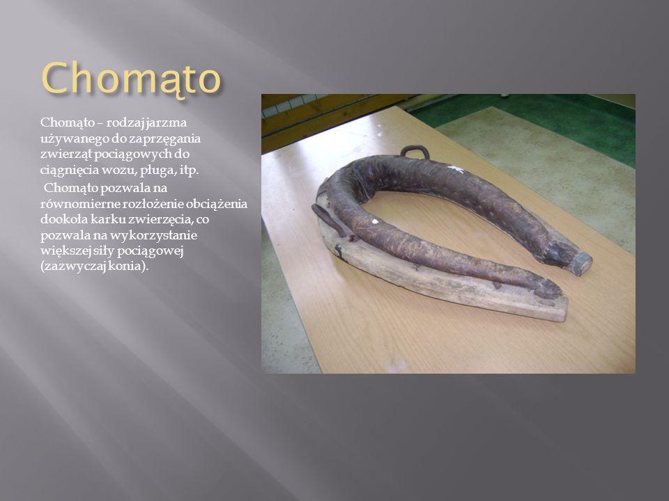 Chomąto Chomąto – rodzaj jarzma używanego do zaprzęgania zwierząt pociągowych do ciągnięcia wozu, pługa, itp.