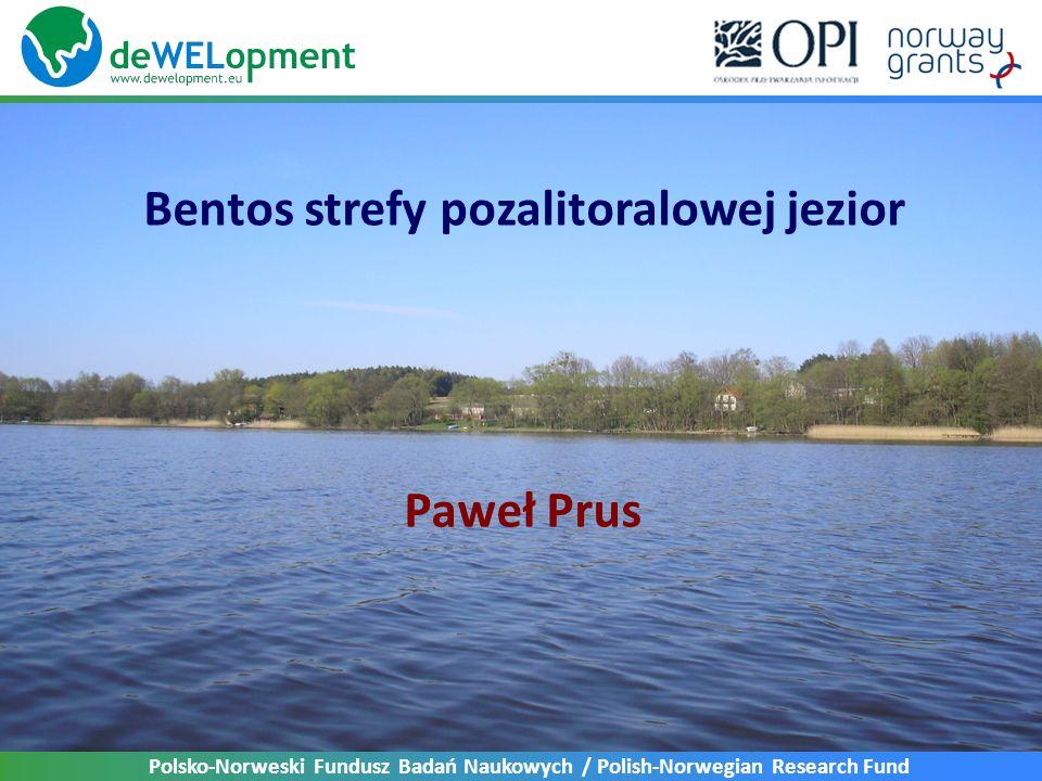Bentos strefy pozalitoralowej jezior