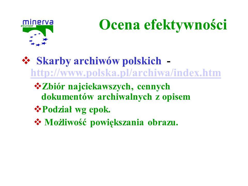 Ocena efektywności Skarby archiwów polskich - http://www.polska.pl/archiwa/index.htm.