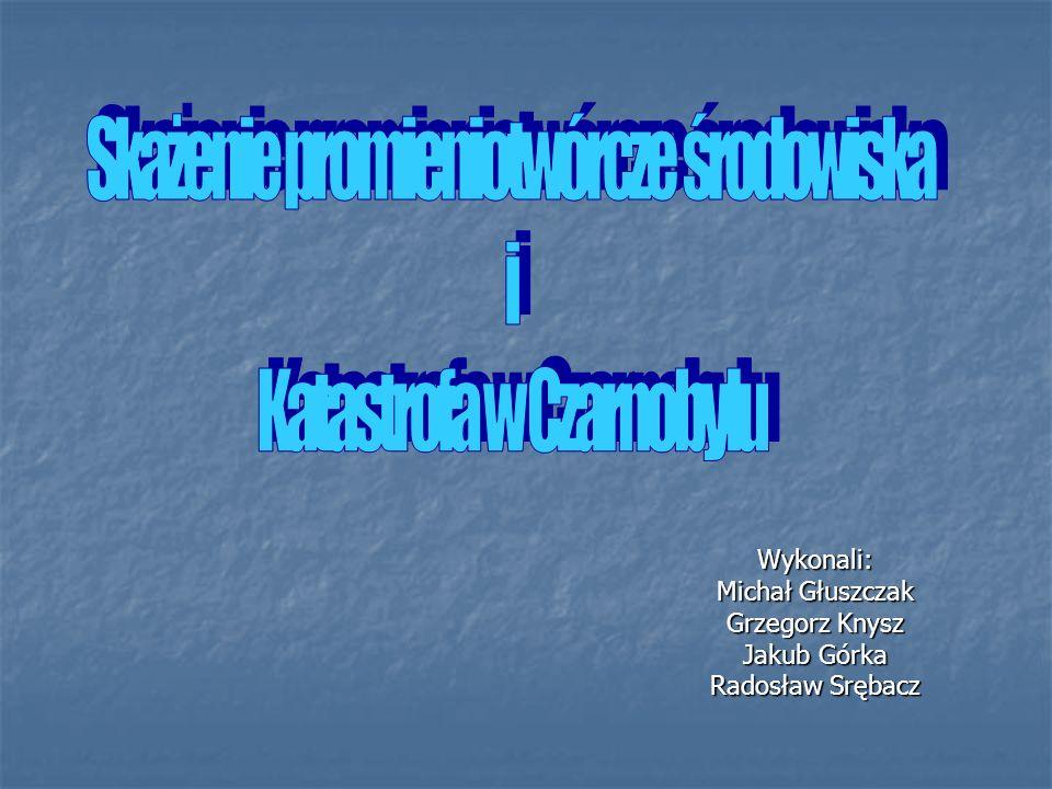 Wykonali: Michał Głuszczak Grzegorz Knysz Jakub Górka Radosław Srębacz