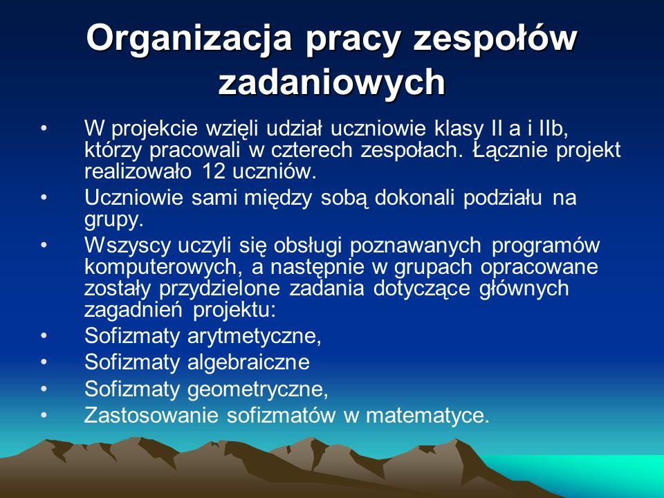 Organizacja pracy zespołów zadaniowych