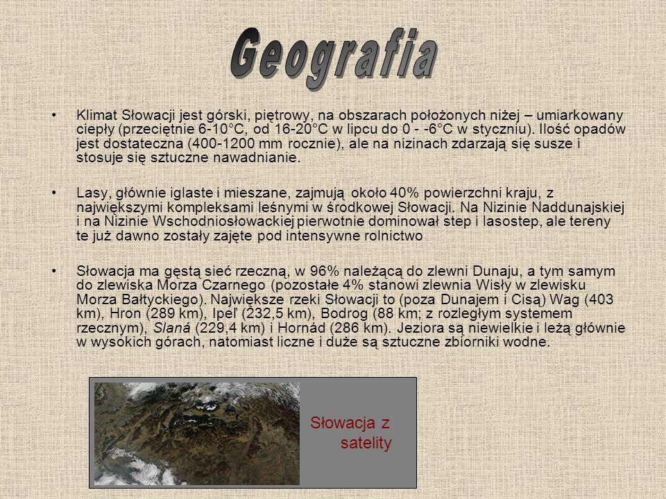 Geografia Słowacja z satelity